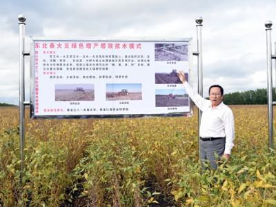 张玉先:龙江大豆的守护人