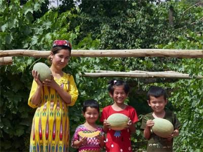 绿色新疆 品质农业