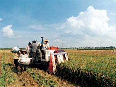 上海市绿色农业发展报告(2018)