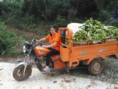 胡苏: 生态农业的追梦人