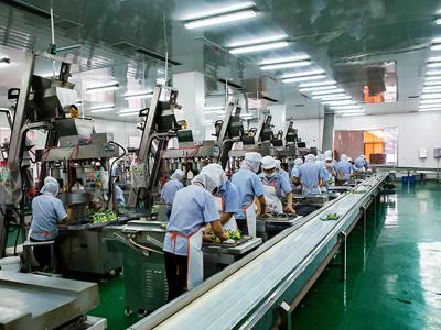 余姚市:打造榨菜全产业链,促进一二三产业融合发展
