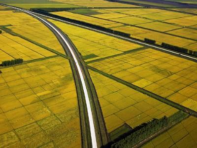 黑龙江农垦:创新绿色发展,建设农业航母