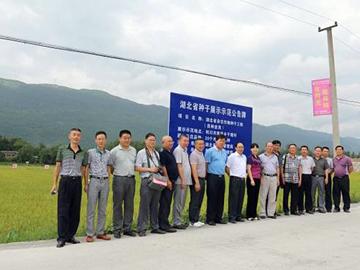 湖北省绿色农业发展报告(2011—2017)