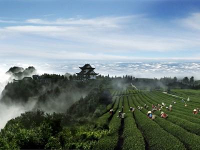 贵州省绿色农业发展报告(2018)