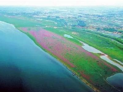 """荆州市:""""双水双绿""""打造乡村振兴的成功典范"""
