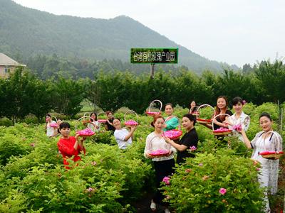 四川省西充县:践行绿色发展理念,争当有机农业排头兵