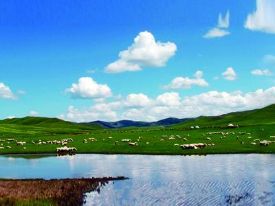 内蒙古:创新工作方式,推动绿色农业高质量发展