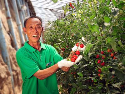 河北省:抓有机,强产业,推动绿色农业跨越发展