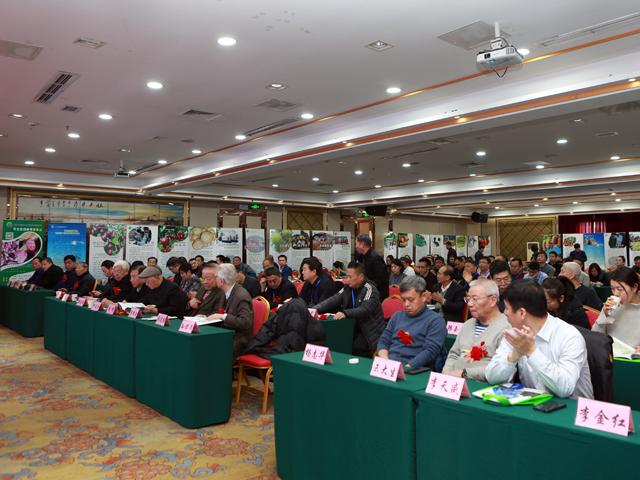 中国农网:2019中国绿色农业发展年会在京举办
